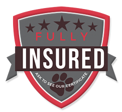 We Love Pets - Full Insured Dog Walkers and Boarders