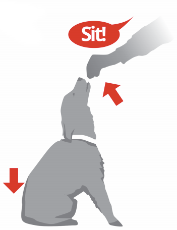 Teaching sit