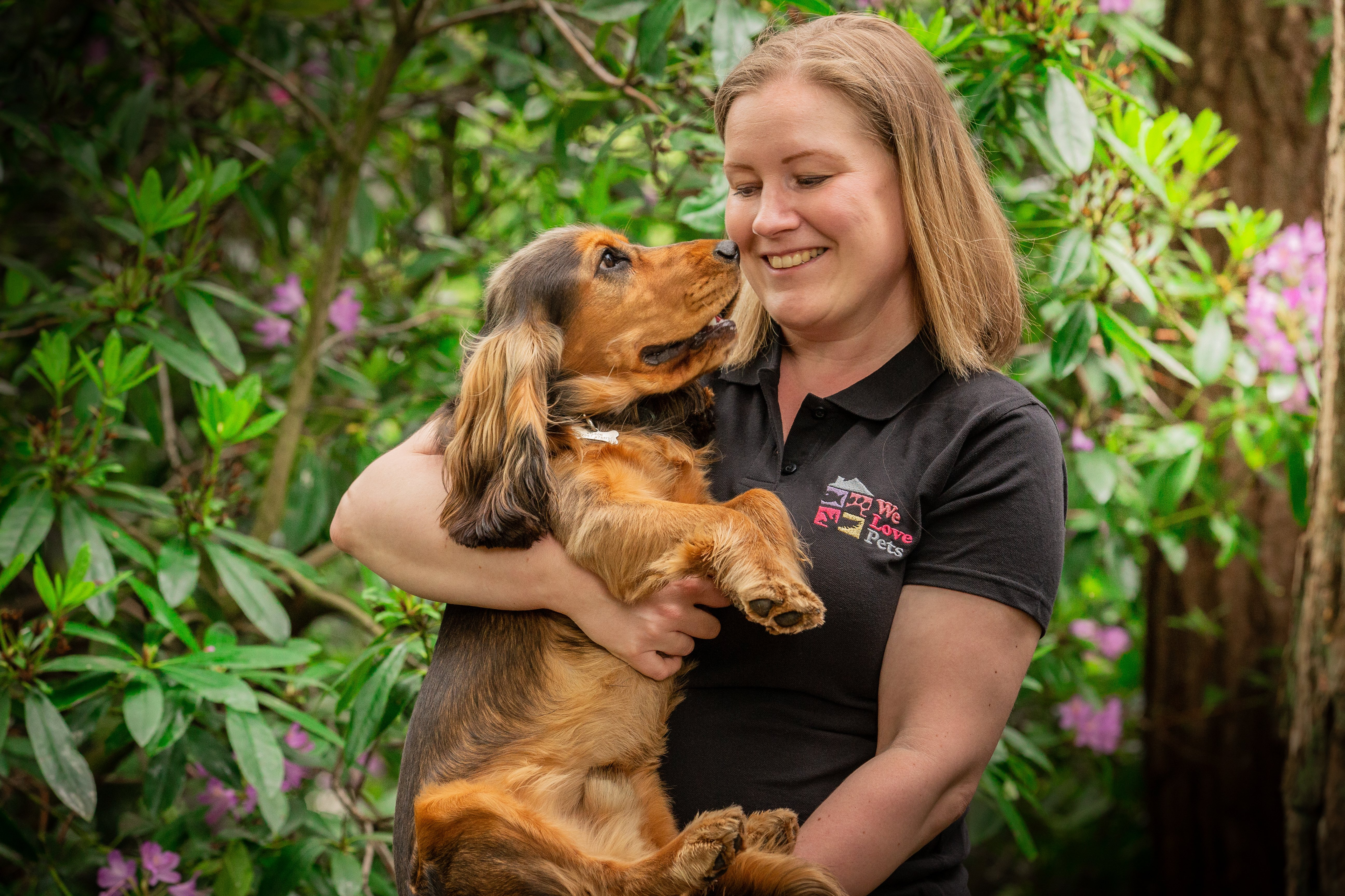 Dog walker and pet sitter in Shirley. Your pet is in safe hands with We Love Pets.