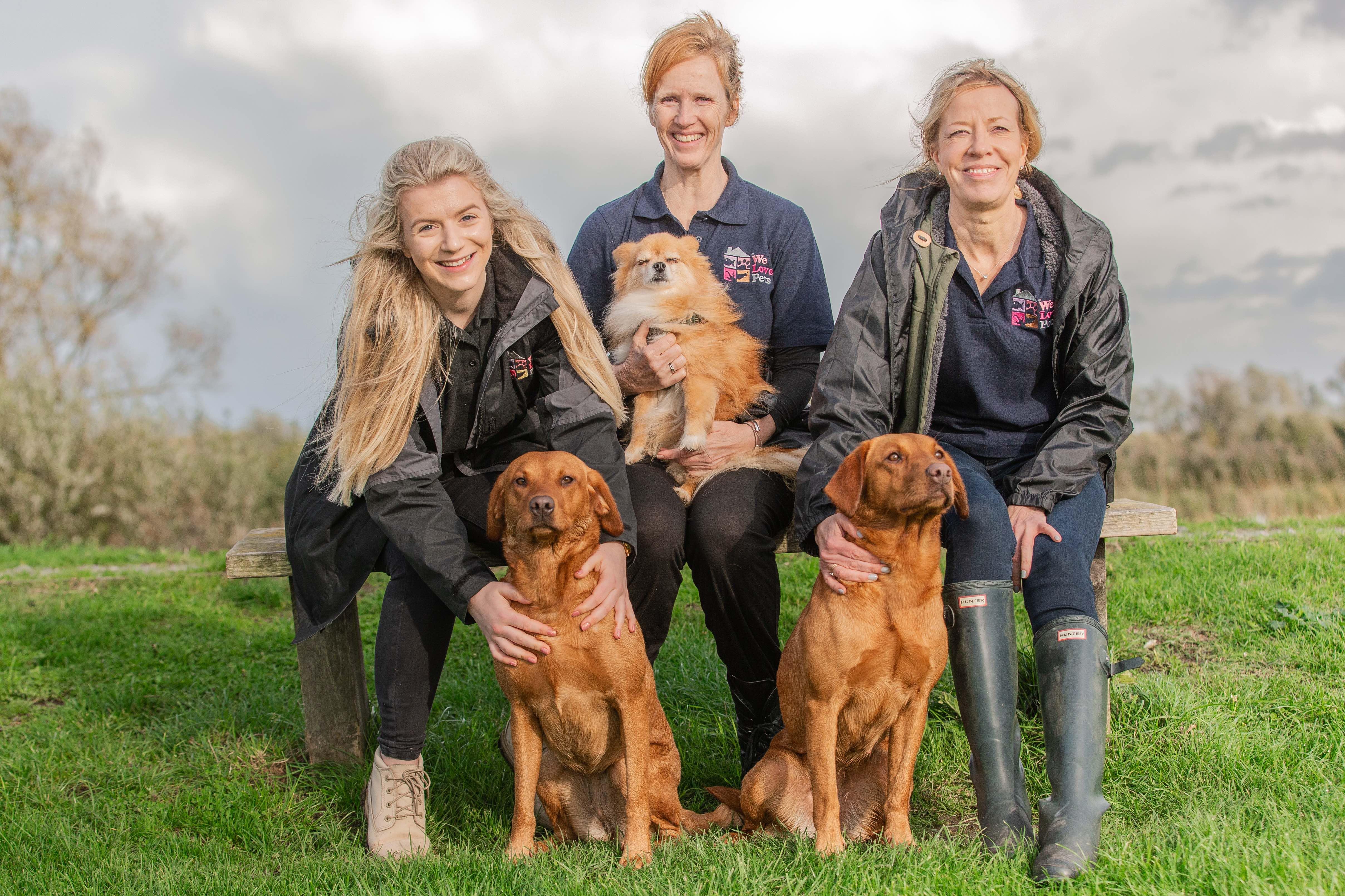 Pet sitting and dog home boarding in Haywards Heath. Multi award winning We Love Pets.