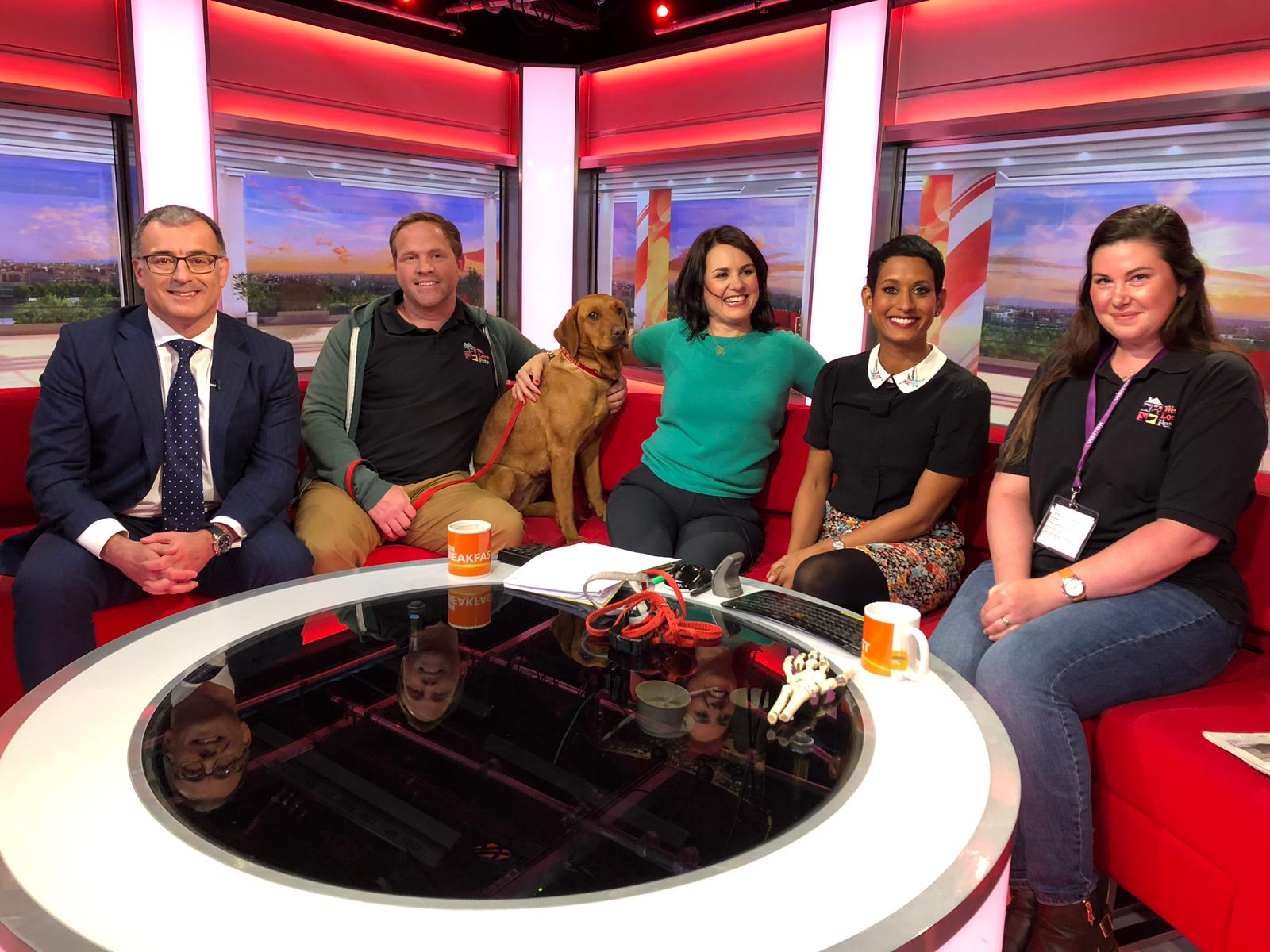 BBC Breakfast Ryan White Managing Director We Love Pets