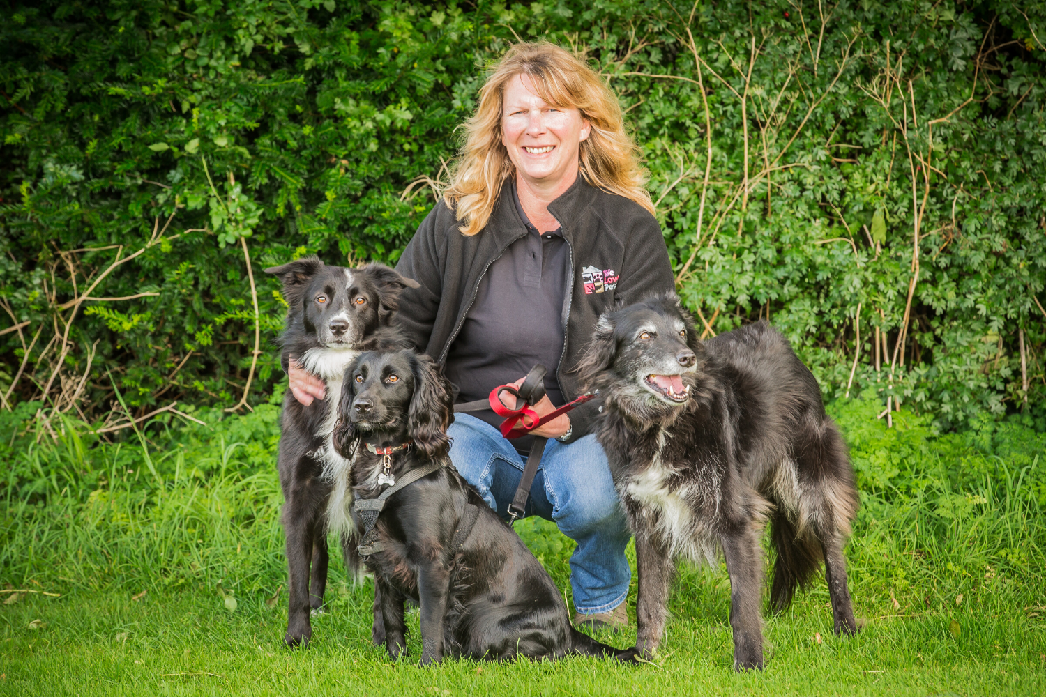Dog walker and pet sitter for Salisbury. We look after your pets as if they were our own.