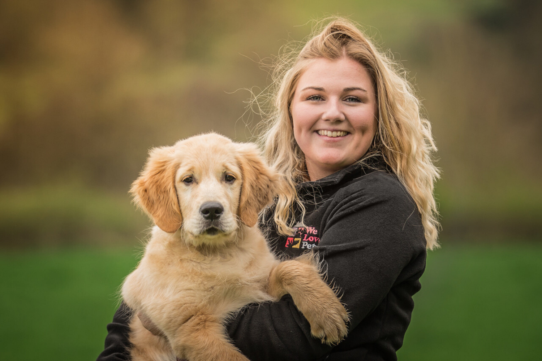 Dog walking and pet sitting in Llantwit Major. Multi award winning We Love Pets.