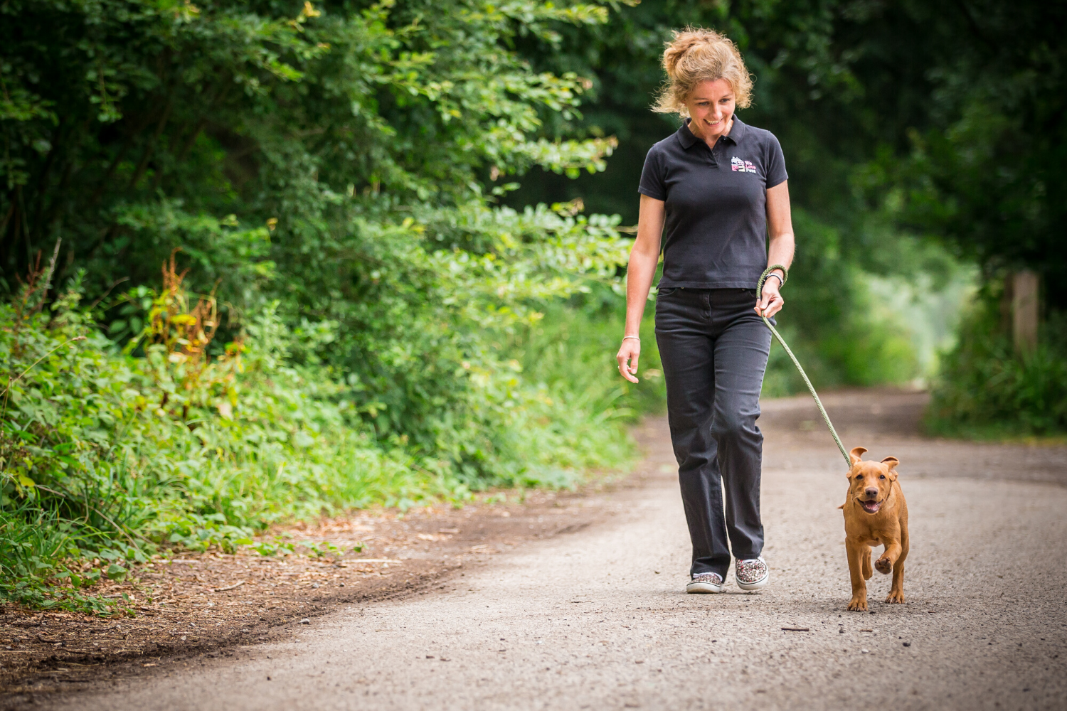 Dog walker and pet sitter in Stroud and Tetbury. Award winning pet care.
