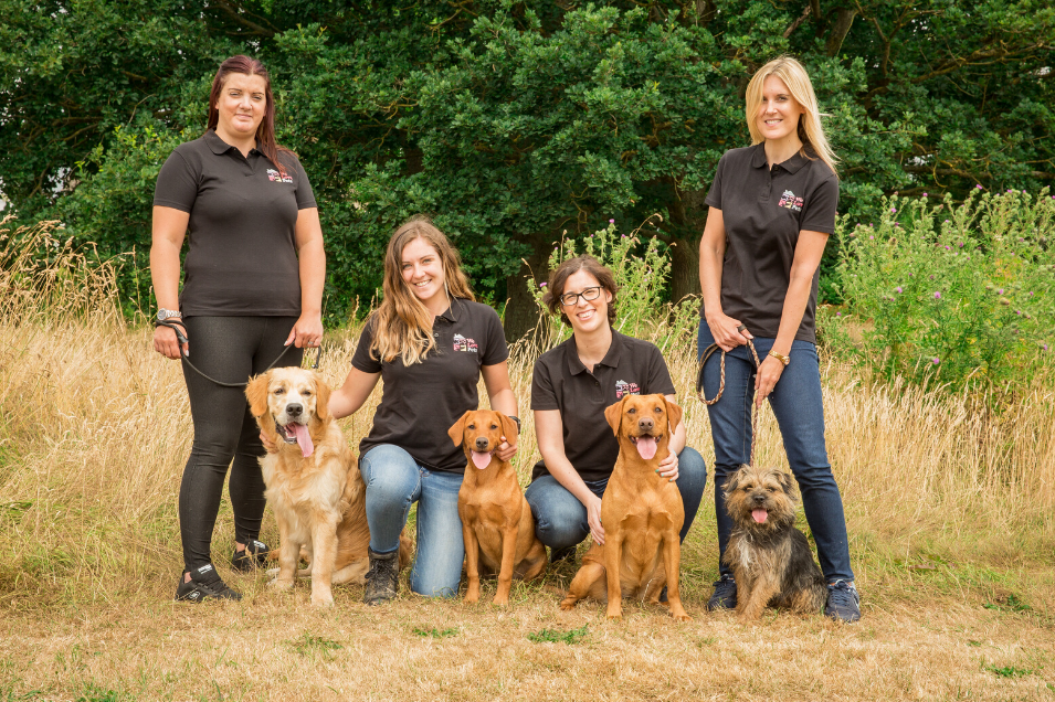 Dog walking and pet sitting in Gloucester South. We treat your pet as if they were our own.