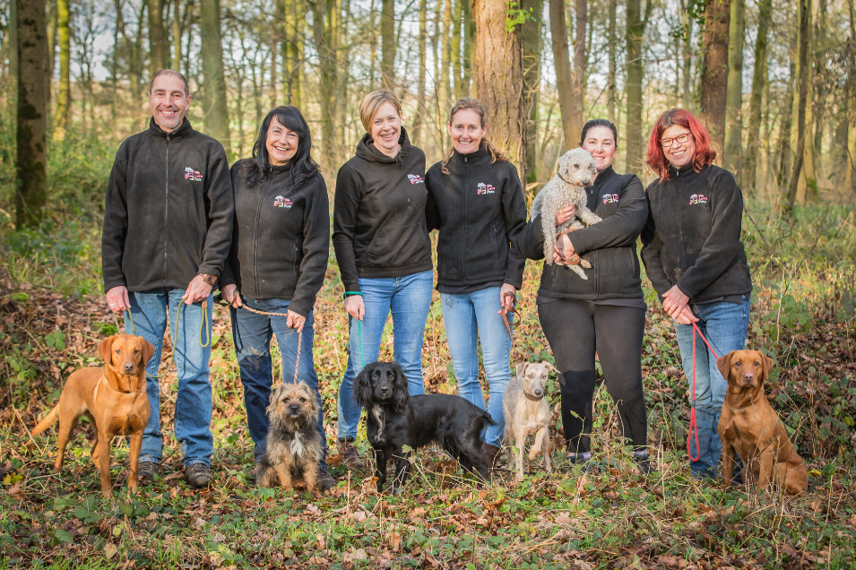 Professional, reliable and fully insured dog walking and pet sitting in Durlsey