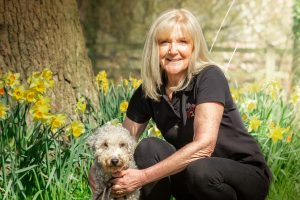 We Love Pets Altrincham - Dog walking and pet sitting