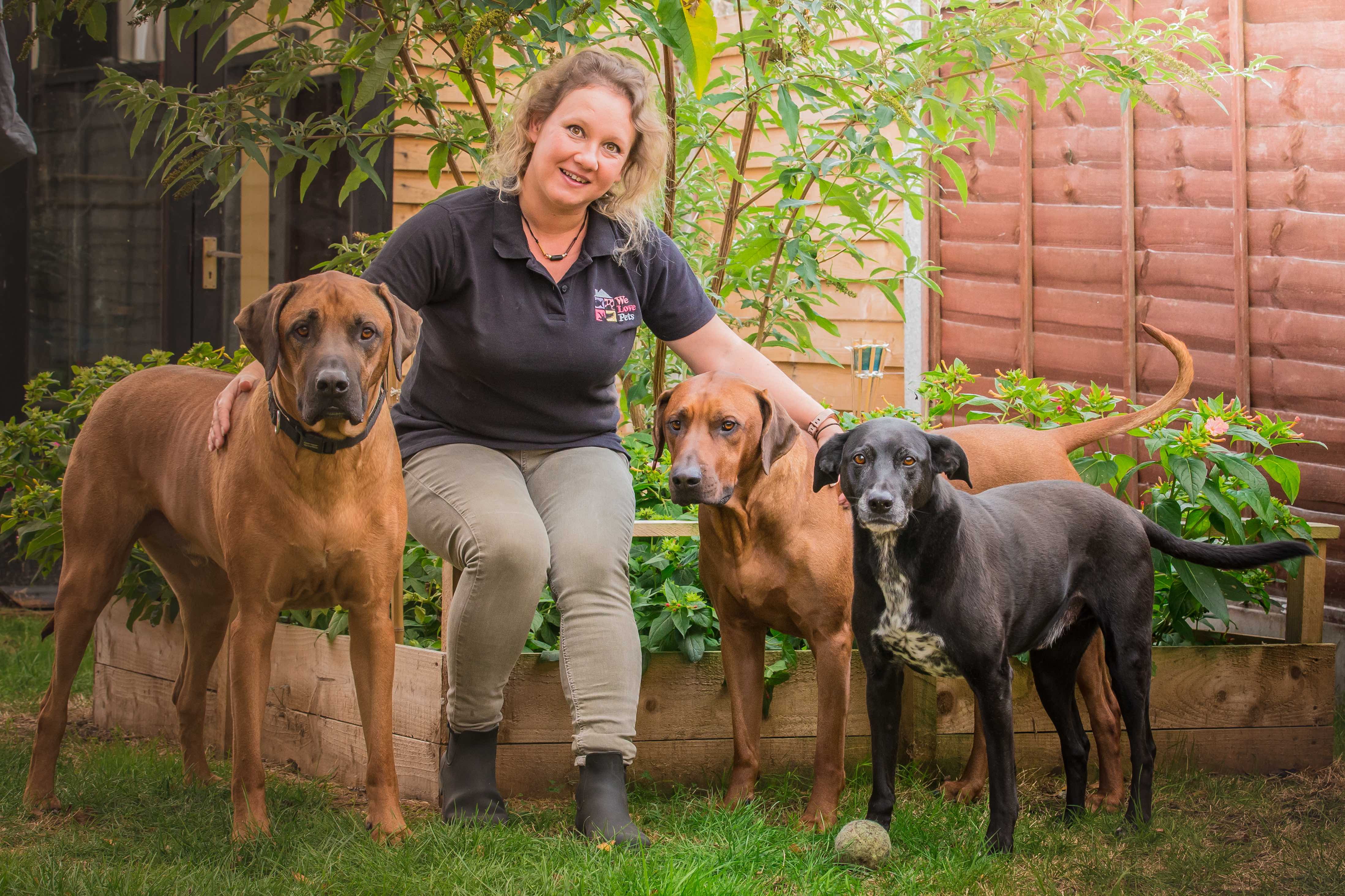 Loving and professional pet care for Barnet
