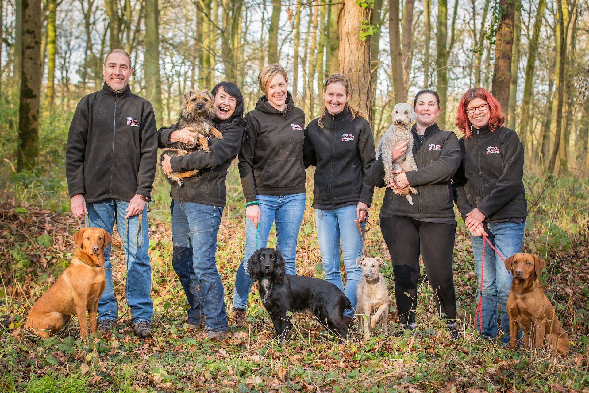 Join a team of pet sitters